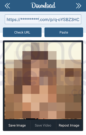 Almacenar fotos de Instagram