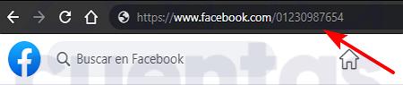 Código para saber quién visita un perfil de Facebook